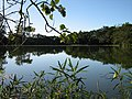 Lago no Parque da Cidade - panoramio.jpg