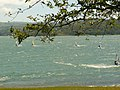Lake Arenal Windsurfer.JPG