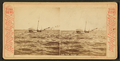 Lake view, Chicago, from Robert N. Dennis collection of stereoscopic views.png