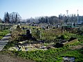 Lancing Manor Park Allotments - geograph.org.uk - 1111478.jpg