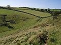 Landcombe - geograph.org.uk - 535744.jpg