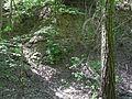 Landschaftsschutzgebiet Gestorfer Lößhügel - Steinbruch (9).JPG
