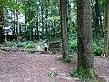 Landschaftsschutzgebiet Waldgebiete bei Dielingdorf und Handarpe LSG OS 00025 Datei 3.jpg