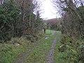 Lane, Clanabogan - geograph.org.uk - 1578140.jpg