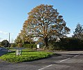 Lane junction at Forward Green - geograph.org.uk - 1582782.jpg