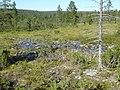 Lapland - Urho Kekkonen National Park - 20180728152615.jpg