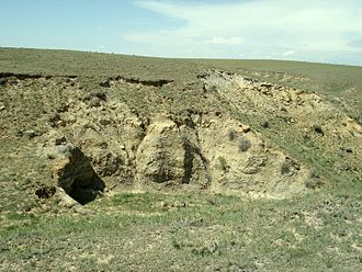 Laramie Formation - A typical outcrop of the Laramie Formation in northeastern Colorado.