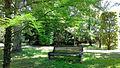 Le parc Château des Réaux.jpg