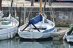 Le sloop de pêche AMPHITRITE (12).JPG