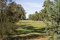 Leeton Soldiers Golf Club (1).jpg