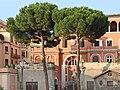 Lenvironnement du Palais Barberini (Rome) (5969794173).jpg