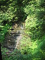 Leonard Harrison State Park Turkey Path Waterfall.jpg