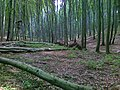 Les - panoramio (6).jpg