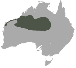 Lesser Hairy-footed Dunnart area.png