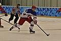 Lillehammer 2016 Hockey Norvège - Russie (25025956436).jpg