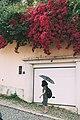 Lisbon photowalk (48132964038).jpg