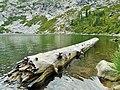 Log in Granite Lake - panoramio.jpg