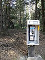 Lonely phone in woods - panoramio.jpg