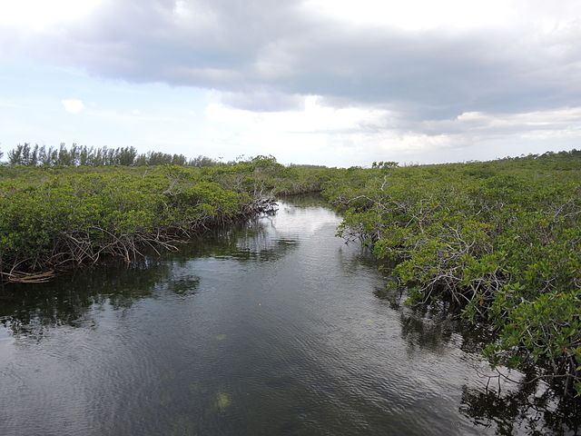 Lucayan National Park