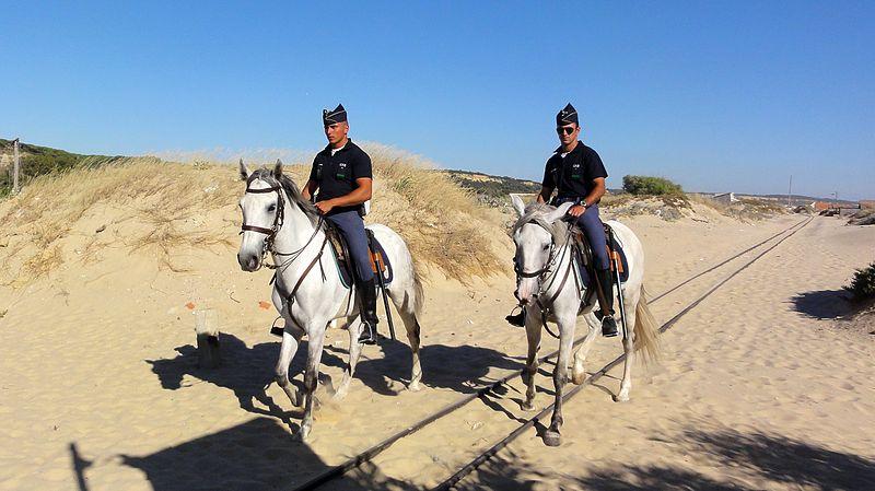 [Imagem: 800px-Lusitano_horses%2C_GNR_cavalry_%28Portugal%29.jpg]