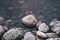 Lycksele, Sweden (Unsplash TkcGnOA3C4A).jpg