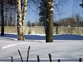 Lyovintsy, Kirovskaya oblast', Russia, 612079 - panoramio (55).jpg