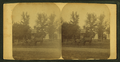 """M. O. McNiff's """"Shack"""", Dover, Minn, from Robert N. Dennis collection of stereoscopic views.png"""