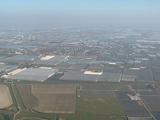 Westland (region), Netherlands - Aerial view of greenhouses in the Westland