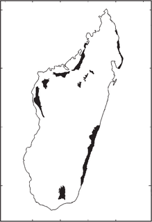 Madagascar flood basalt