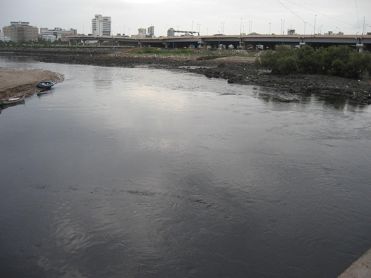 Image result for mahim creek