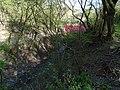 Malá Chuchle, Čertova strouha, potok vedle rybníčku.jpg