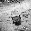 Mali panj za roj- odprtina spredaj zaprta s smrekovimi vejicami, Mrzli Log 1959.jpg