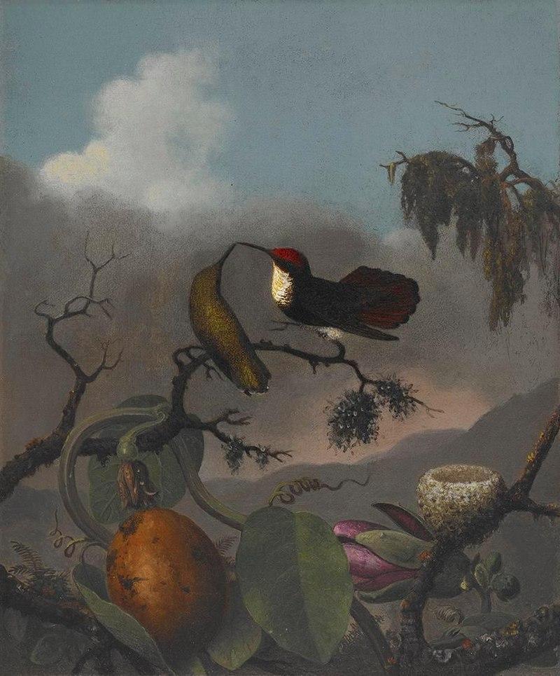 Martin Johnson Heade - Ruby-Topaz - 2006.81 - Crystal Bridges Museum of American Art.jpg
