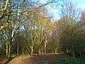 Meilengraben, Technologiepark Dortmund, 3.12.13 - panoramio (3).jpg
