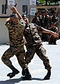 "Members of the Mongolian Expeditionary Task Force contingent deployed to Camp Eggers perform a martial arts demonstration for Naadam, which is locally termed ""The three games of men."" (4782410514).jpg"
