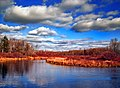 Mill Pond, Monroe County.jpg