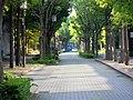 Minatojimanakamachi - panoramio (69).jpg