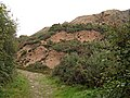 Mine Waste Tip by the Footpath - geograph.org.uk - 366944.jpg