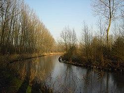 Moervaart nabij Lokeren.jpg