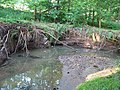Motolský potok, pod zastávkou Hotel Golf, meandr (01).jpg