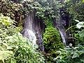 Mount Cameroon waterfall, Buea.jpg