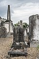 Mount Jerome Cemetery - 131437 (35564656243).jpg