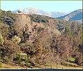 Mts and Hills, Yucaipa Reg Park 3-10-13a (8552675712).jpg