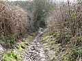 Muddy bridleway climb to Blackcap - geograph.org.uk - 1769353.jpg