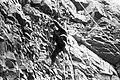 Mustjala pank. Siluri klint 74 (04).jpg