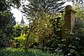 Myddelton House, Enfield, London ~ garden wall and shrubs.jpg