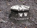 Mystery Cast Iron Marker - geograph.org.uk - 1401007.jpg