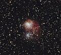 NGC1931HunterWilson.jpg