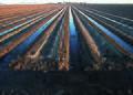 NRCSAZ02037 - Arizona (357)(NRCS Photo Gallery).jpg