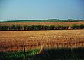 NRCSSD01031 - South Dakota (6081)(NRCS Photo Gallery).jpg